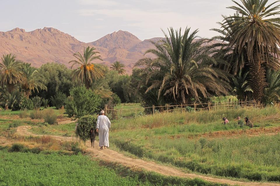 wycieczka do Maroka