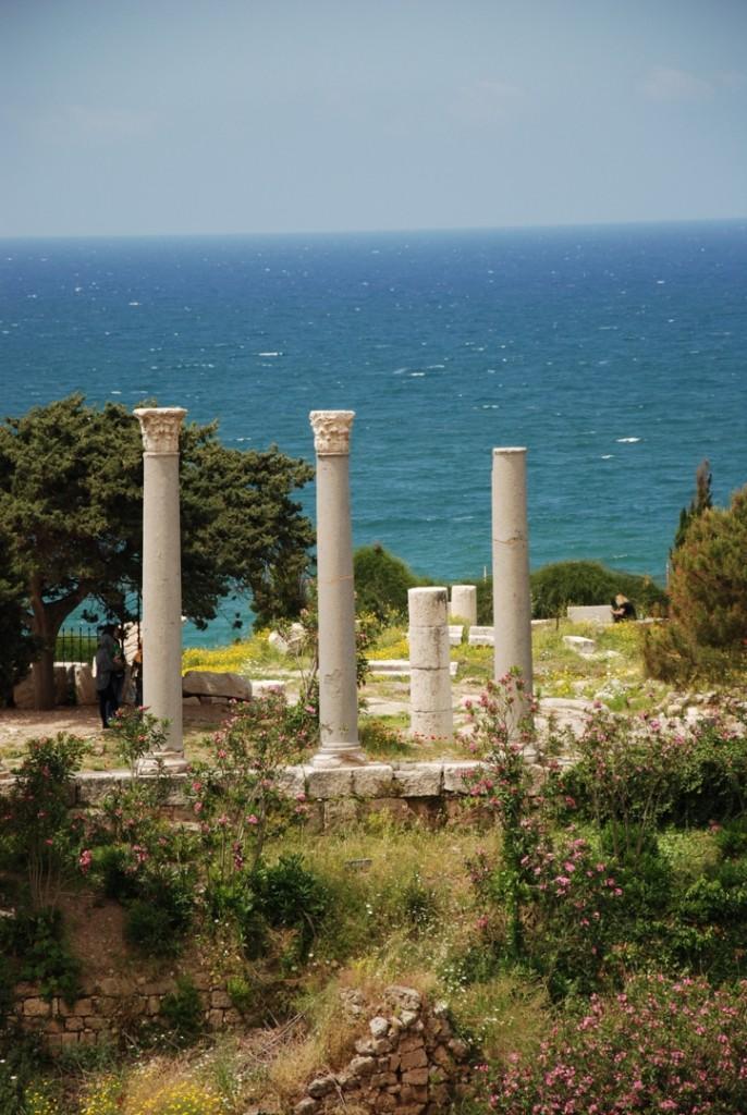 DSC 0765 686x1024 - LIBAN – tam gdzie stykają się kultury - wyprawa