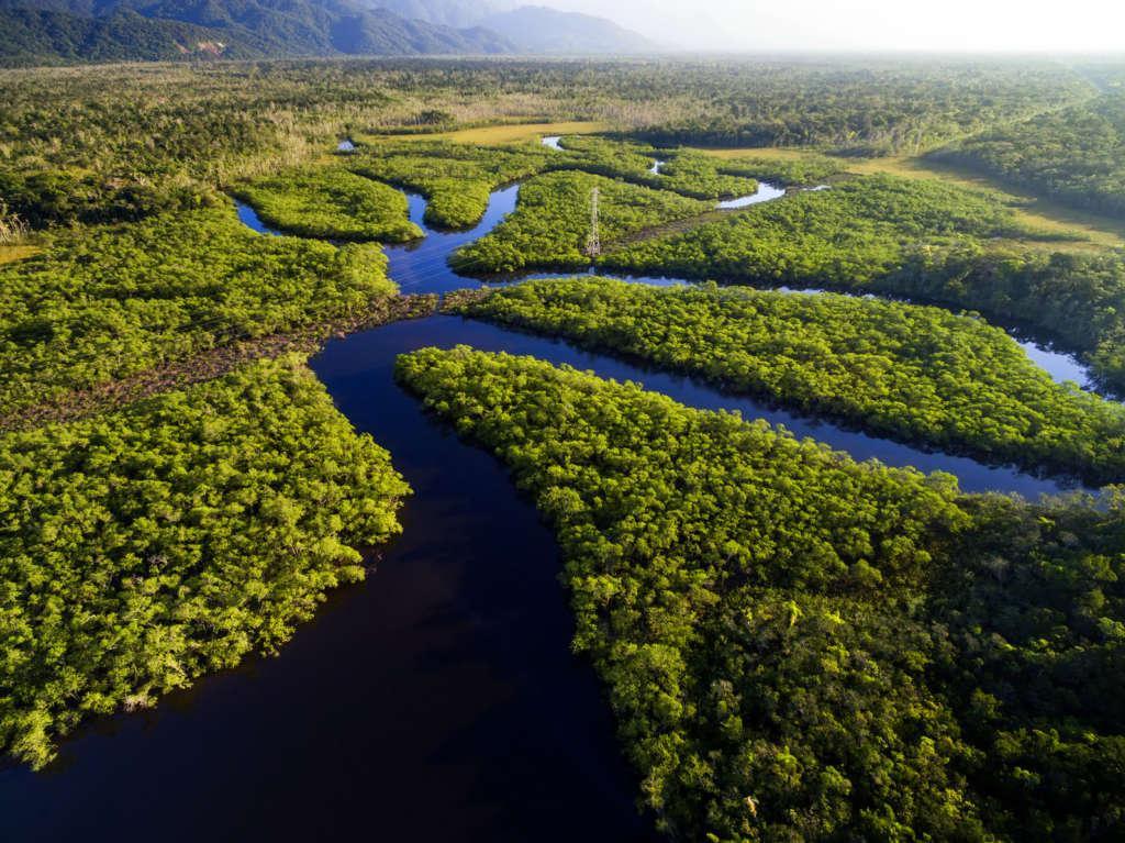 Fotolia 133661904 Subscription Monthly M 1024x767 - BRAZYLIA z Amazonią, Foz do Iguazu i Pantanalem - wycieczka