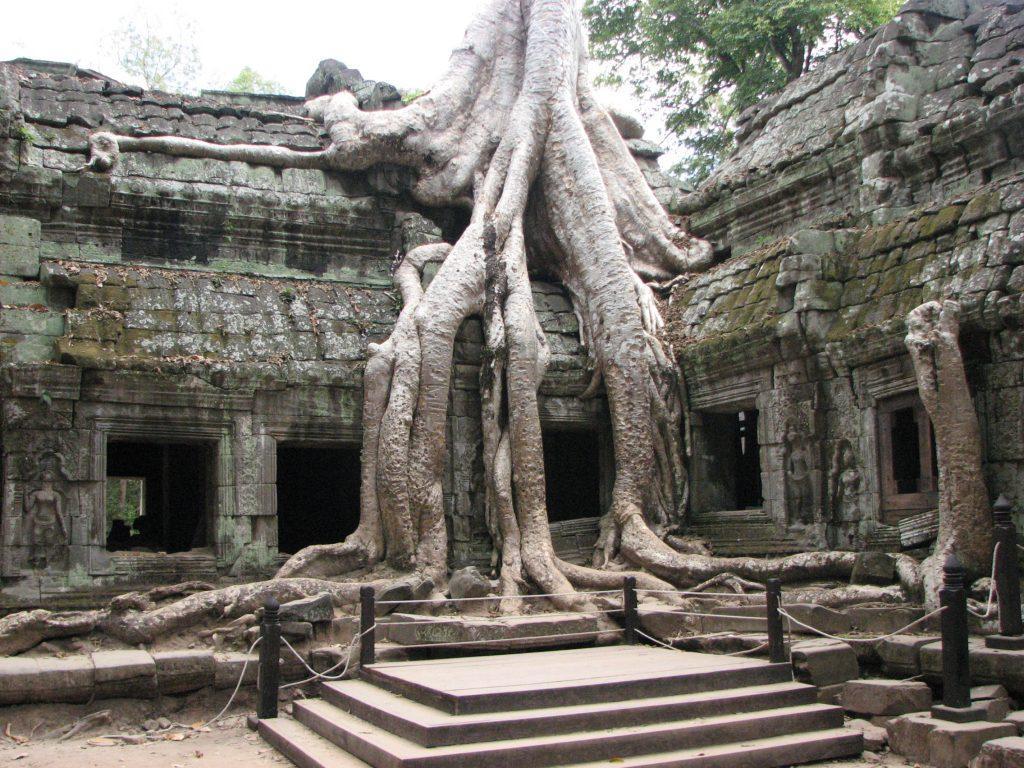 HONG KONG KAMBODZA TAJLANDIA 328 1024x768 - LAOS – KAMBODŻA: wyprawa szlakiem kuchni laotańskiej i khmerskiej