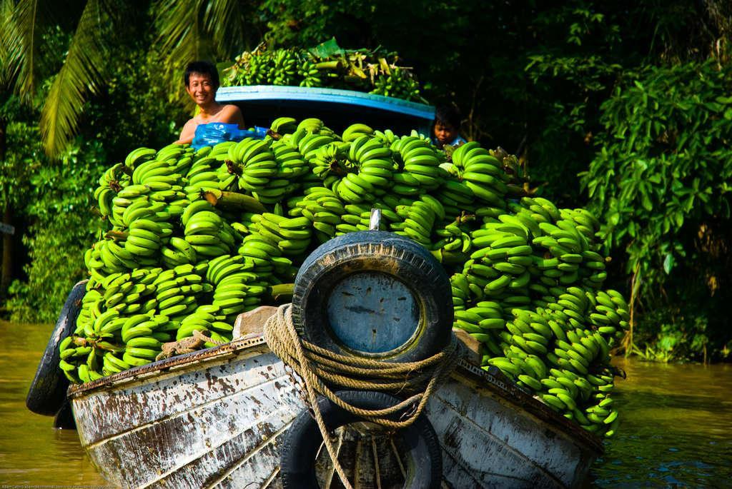 Mekong Delta 2 1 1024x685 - WIETNAM: wyprawa szlakiem smaków orientu