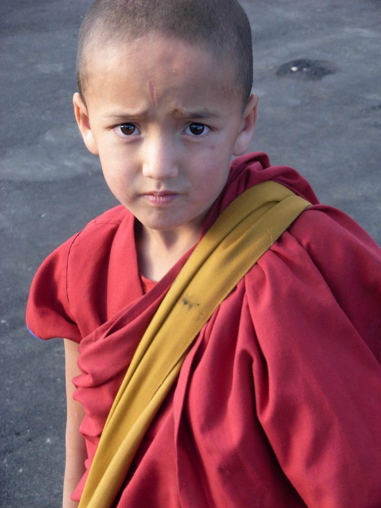 Young Lama 768x1024 - INDIE - Ladakh – Kaszmir: wyprawa na Festiwal Hemis Tsechu