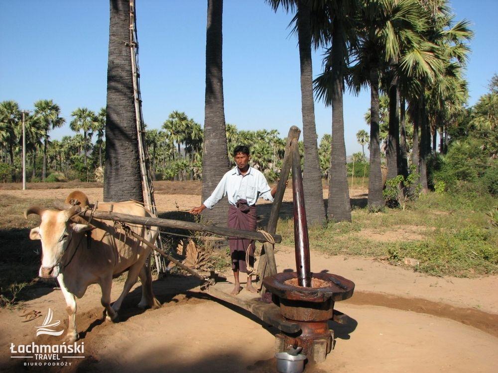 birma 7 - Birma - fotorelacja Bogusława Łachmańskiego