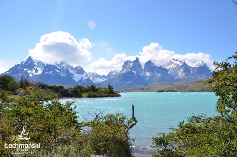 chile 13 - Chile: Patagonia - fotorelacja Bogusława Łachmańskiego