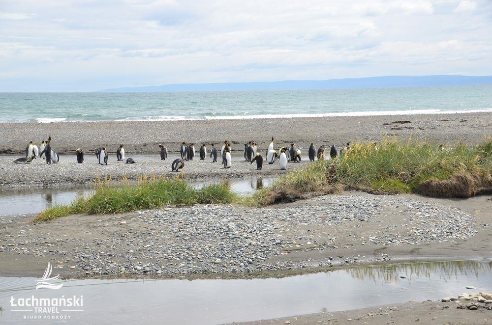 chile 17 - Chile: Patagonia - fotorelacja Bogusława Łachmańskiego