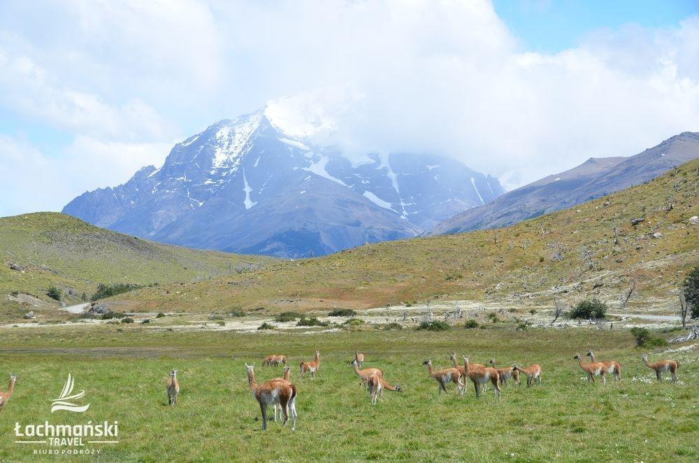 chile 3 - Chile: Patagonia - fotorelacja Bogusława Łachmańskiego