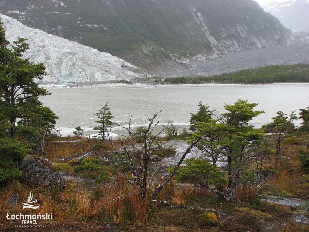 chile 46 - Chile: Patagonia - fotorelacja Bogusława Łachmańskiego