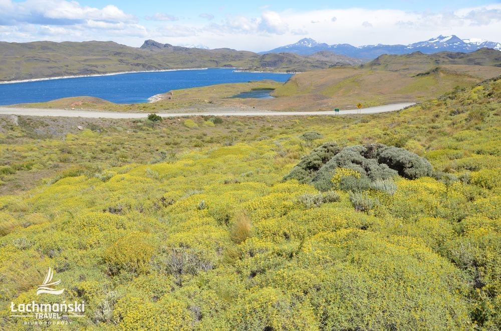 chile 7 - Chile: Patagonia - fotorelacja Bogusława Łachmańskiego