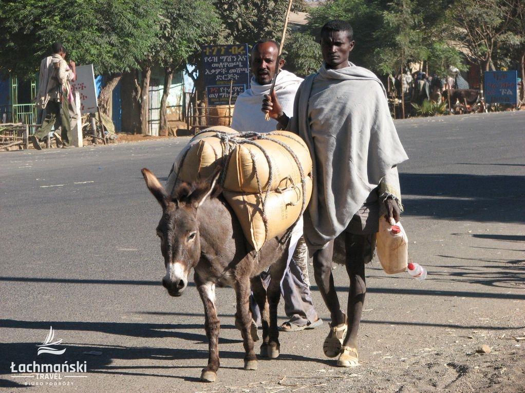 etiopia 9 - Etiopia Północna - fotorelacja Bogusława Łachmańskiego