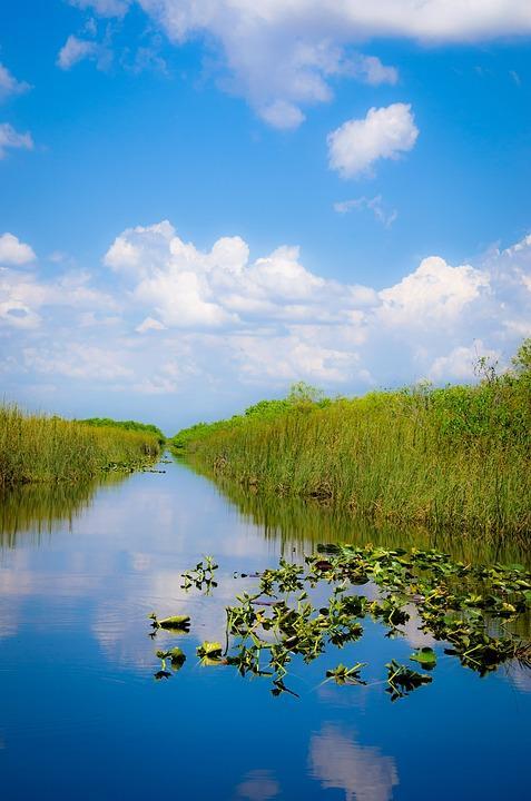 miami 2724820 960 720 - USA: Wschodnie Wybrzeże z Nowym Orleanem i Florydą