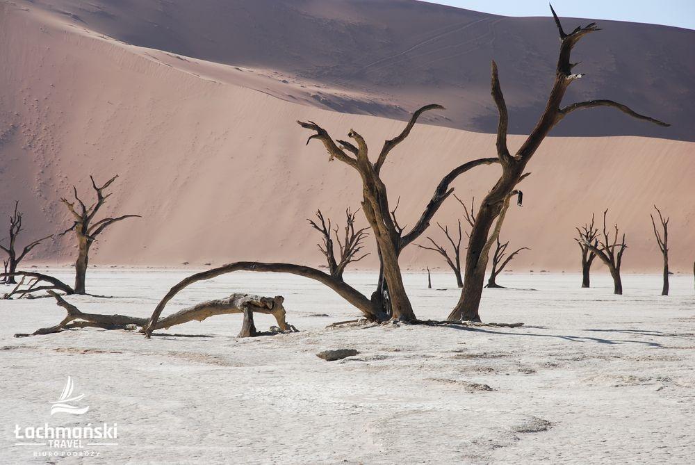 namibia 12 - Namibia - fotorelacja Bogusława Łachmańskiego