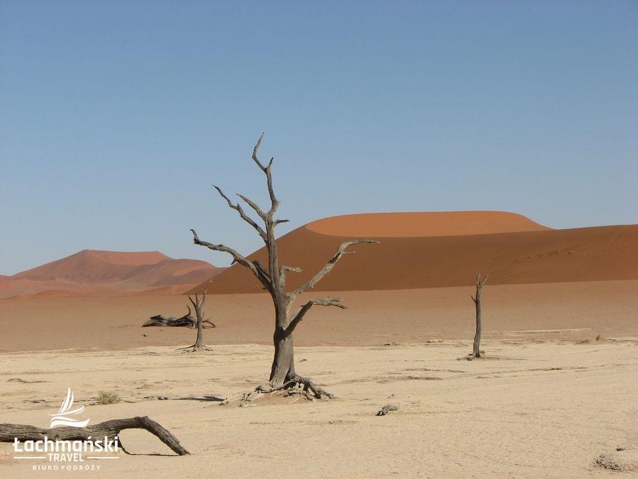 namibia 13 - Namibia - fotorelacja Bogusława Łachmańskiego