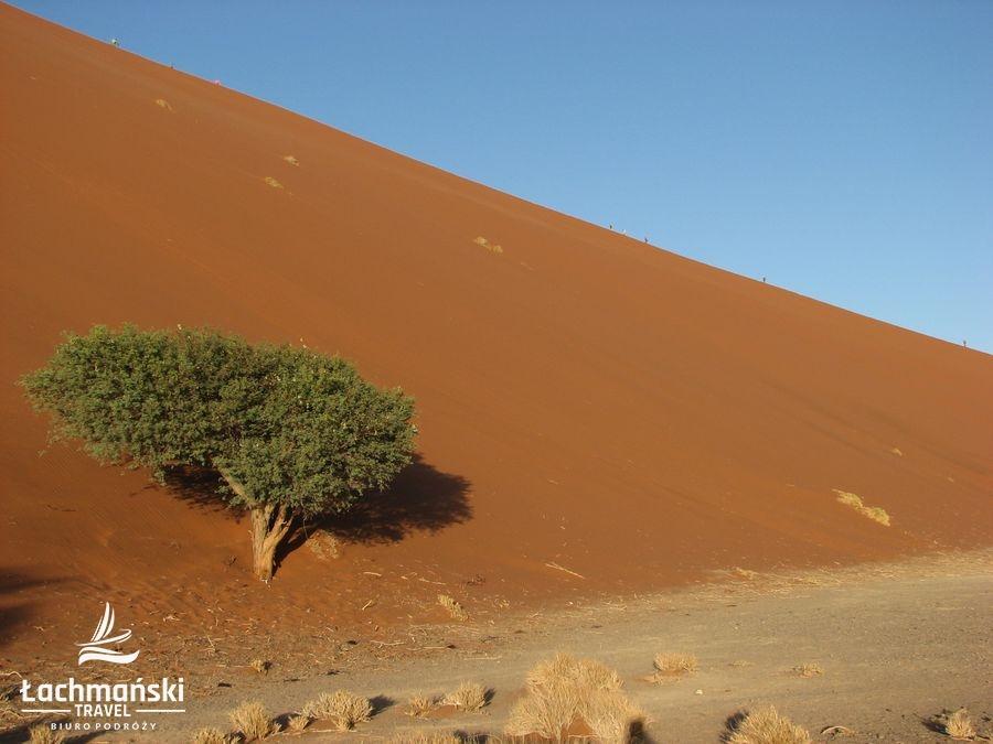 namibia 5 - Namibia - fotorelacja Bogusława Łachmańskiego