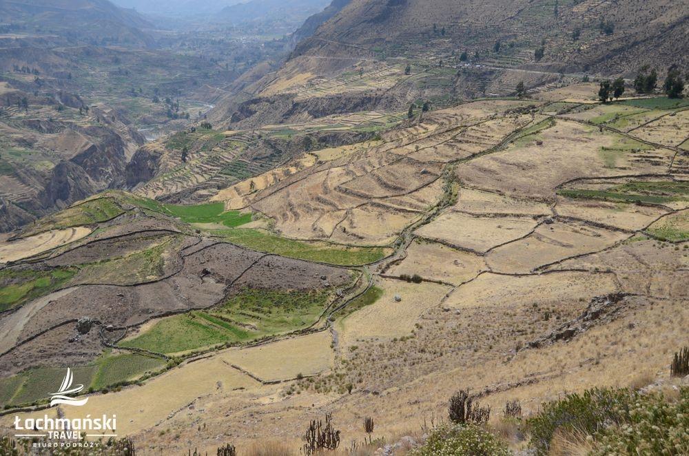 peru 44 - Peru - fotorelacja Bogusława Łachmańskiego