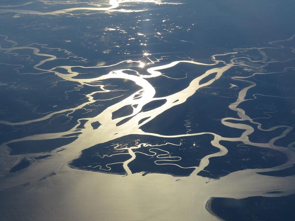 swamp 2248571 960 720 - USA: Wschodnie Wybrzeże z Nowym Orleanem i Florydą