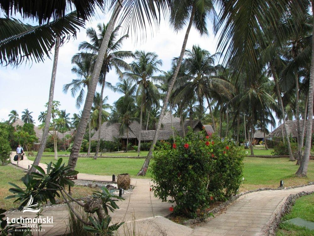zanzibar 1 - Zanzibar - fotorelacja Bogusława Łachmańskiego