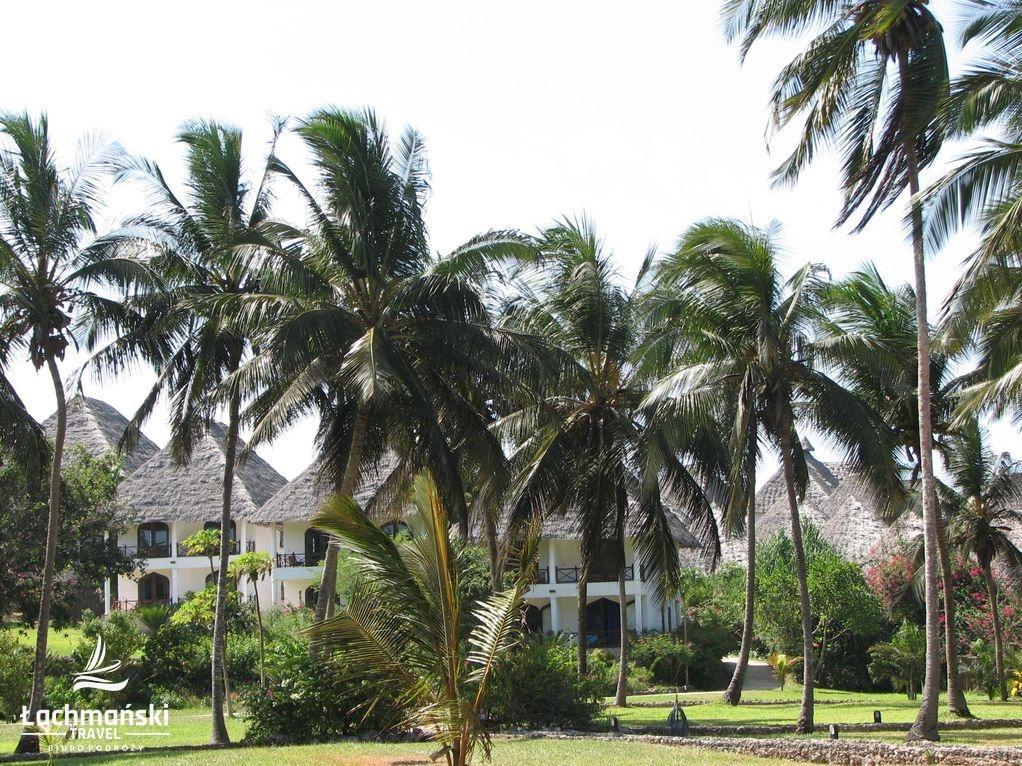 zanzibar 14 - Zanzibar - fotorelacja Bogusława Łachmańskiego