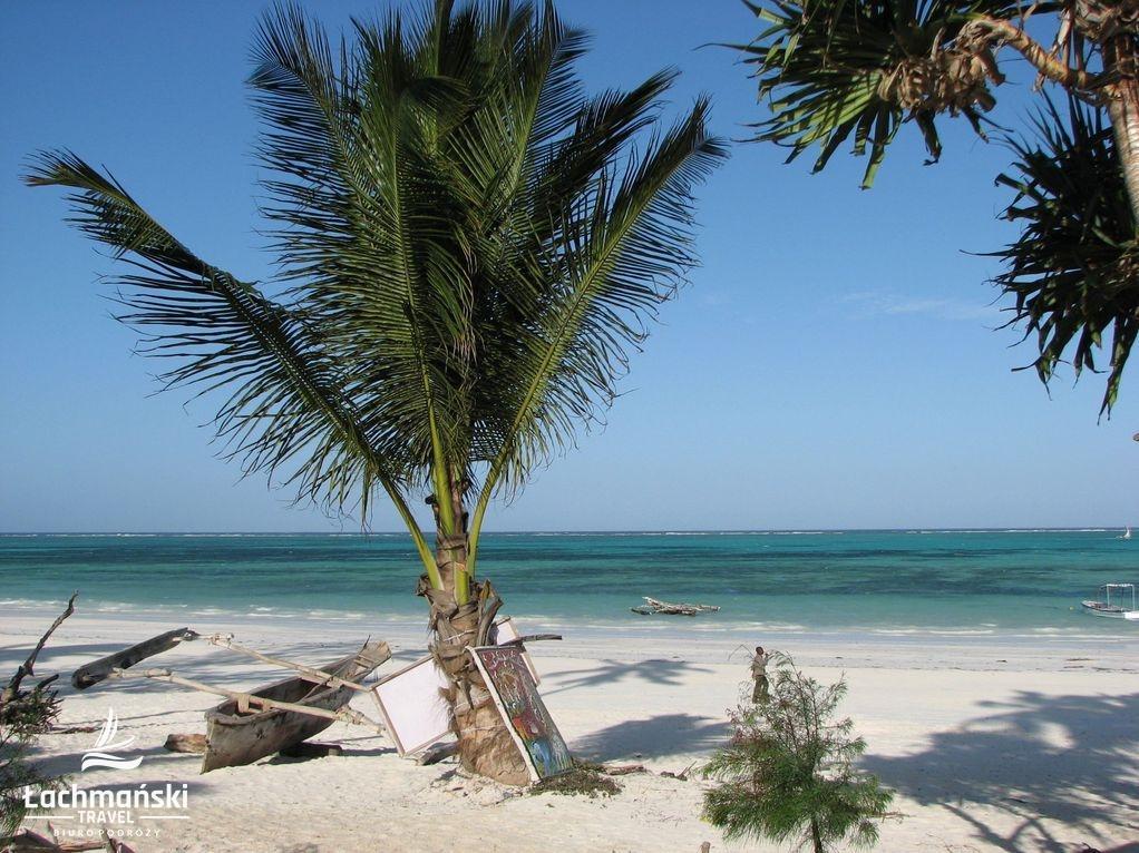 zanzibar 17 - Zanzibar - fotorelacja Bogusława Łachmańskiego