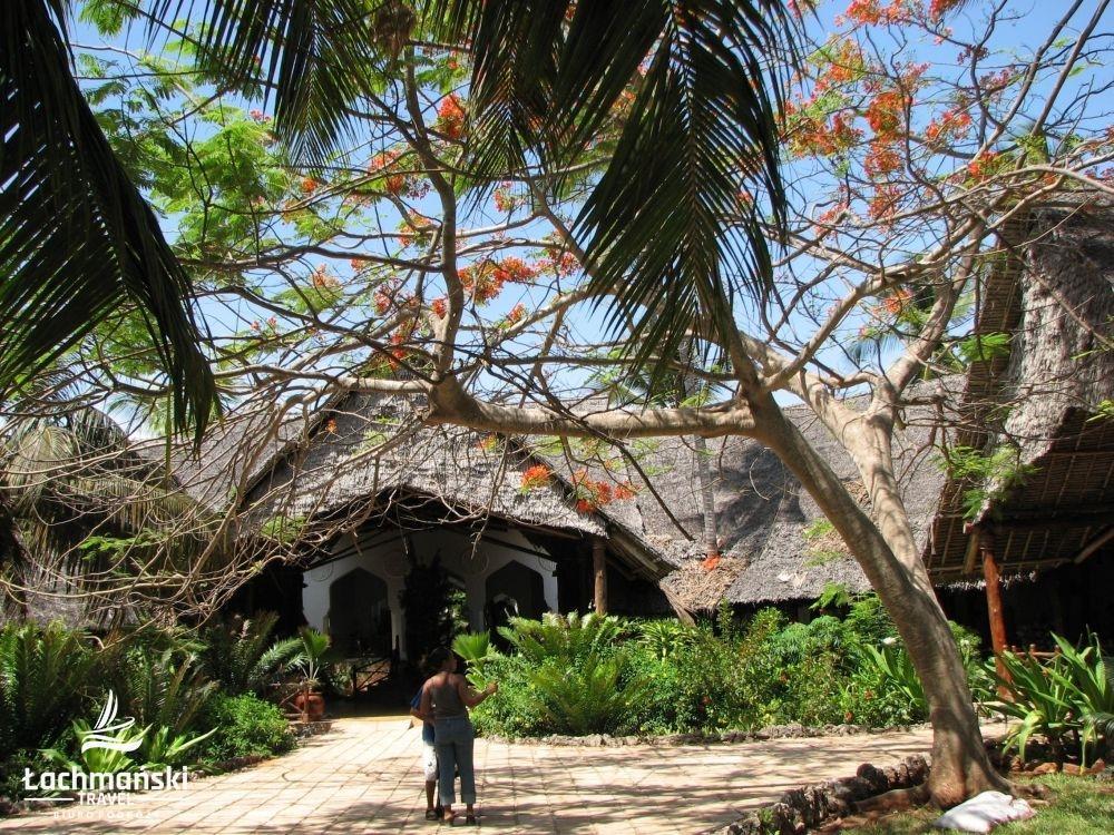 zanzibar 2 - Zanzibar - fotorelacja Bogusława Łachmańskiego