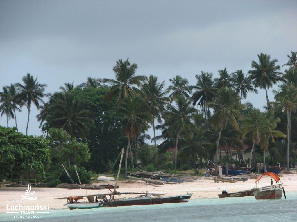 zanzibar 21 - Zanzibar - fotorelacja Bogusława Łachmańskiego