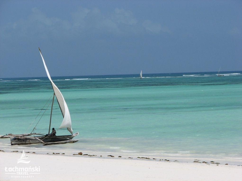 zanzibar 24 - Zanzibar - fotorelacja Bogusława Łachmańskiego