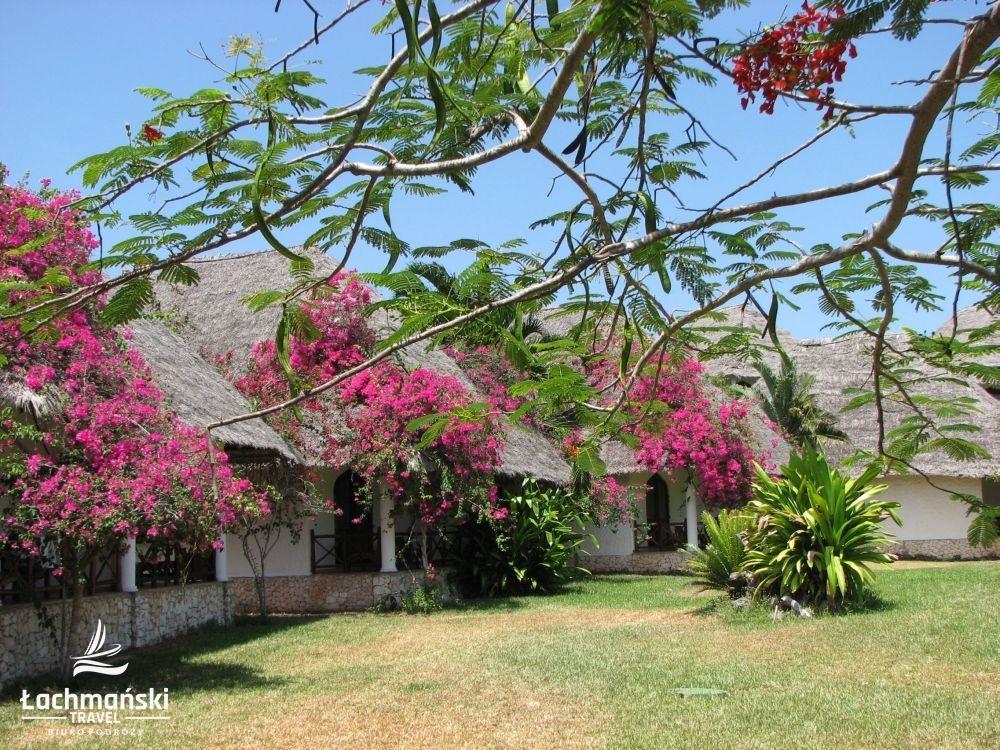 zanzibar 4 - Zanzibar - fotorelacja Bogusława Łachmańskiego