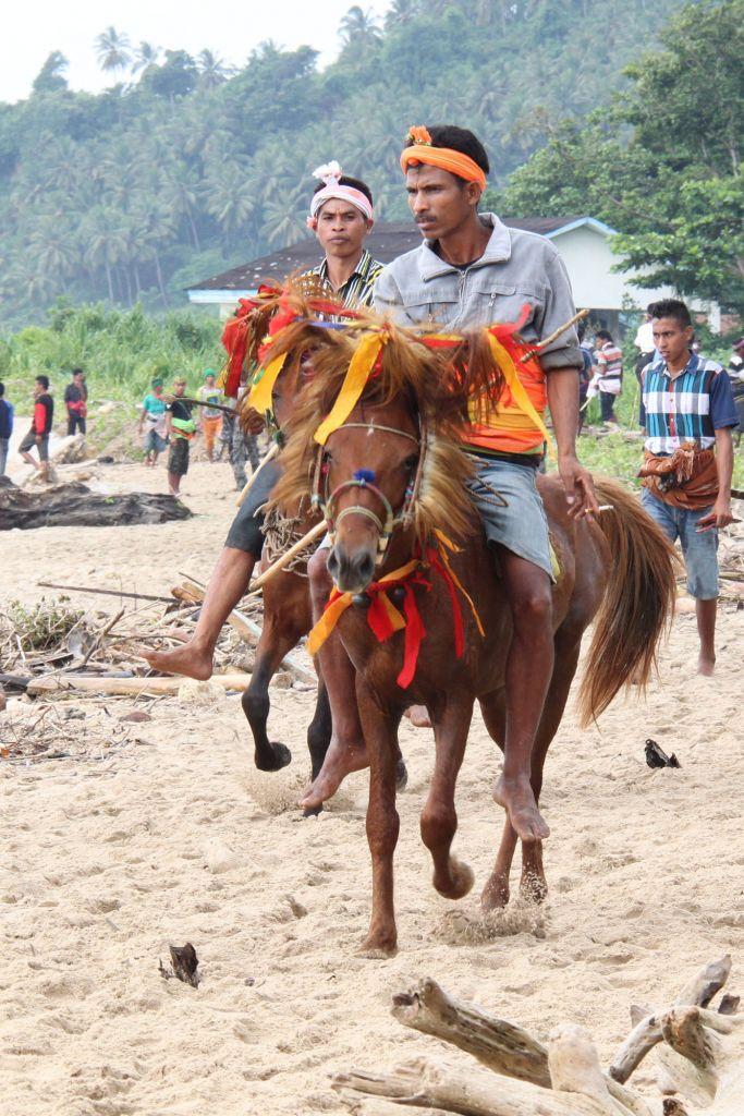 31 683x1024 - INDONEZJA: Sulawesi – Bali – Sumba: wyprawa na Festiwal Pasola