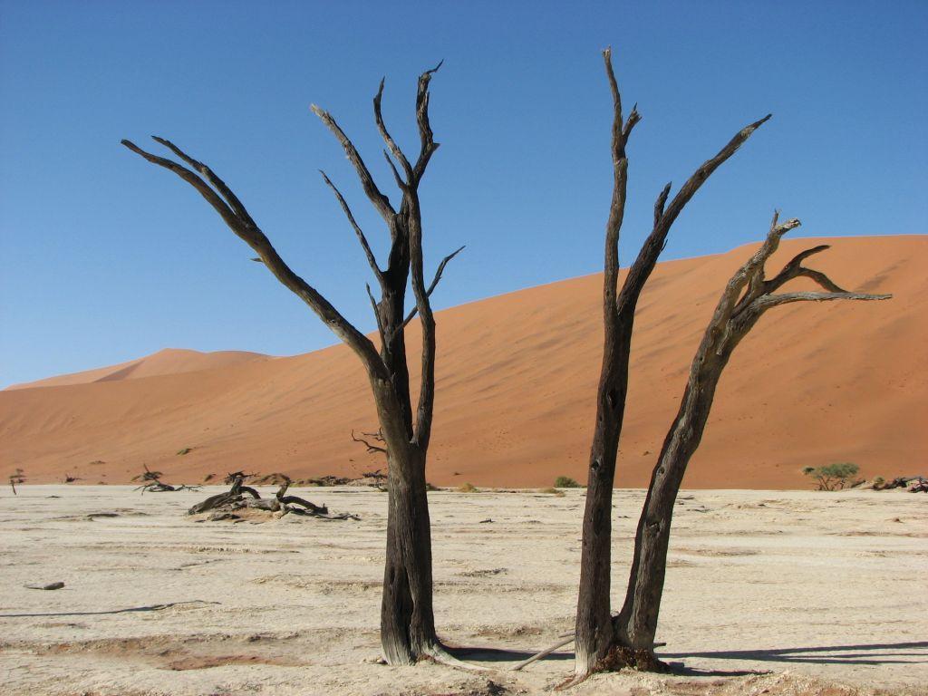 AFRYKA 1 148 1024x768 - NAMIBIA: wyprawa do krainy kontrastów i niepowtarzalnych krajobrazów