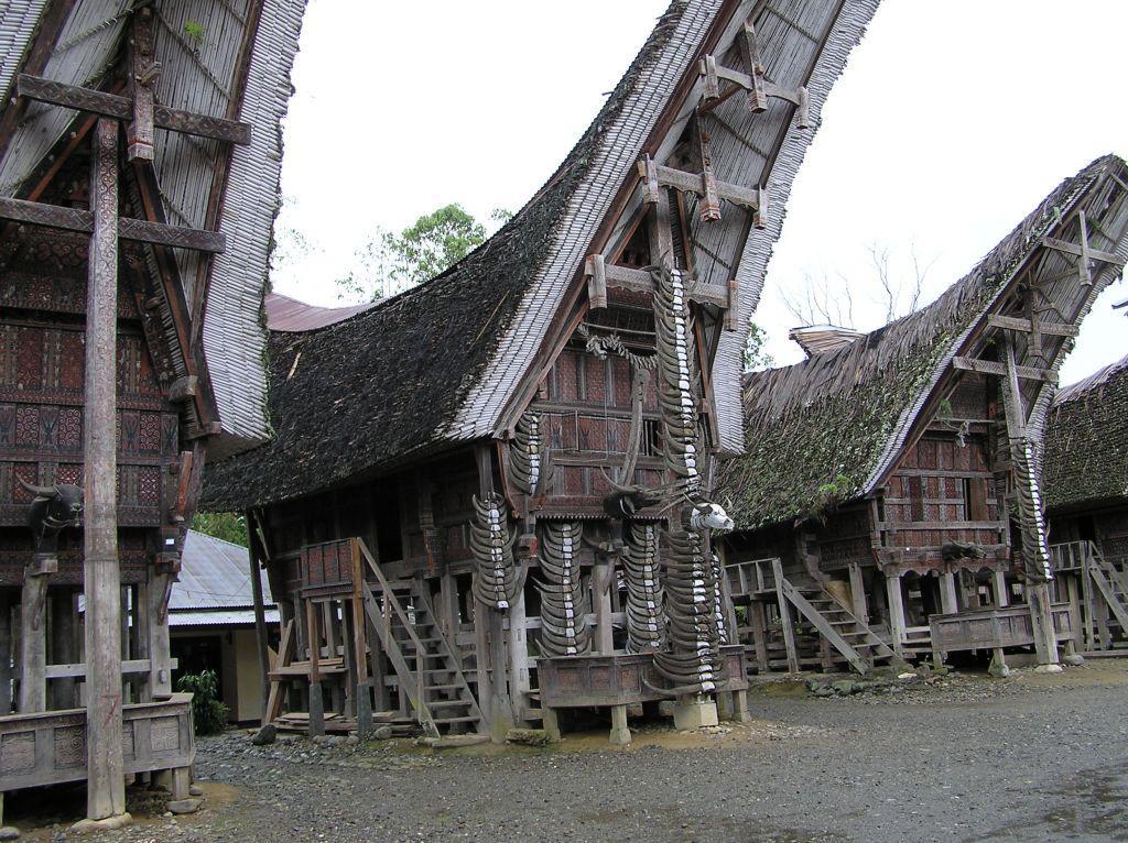 Toraja 36 1024x766 - INDONEZJA: Sulawesi – Bali – Sumba: wyprawa na Festiwal Pasola