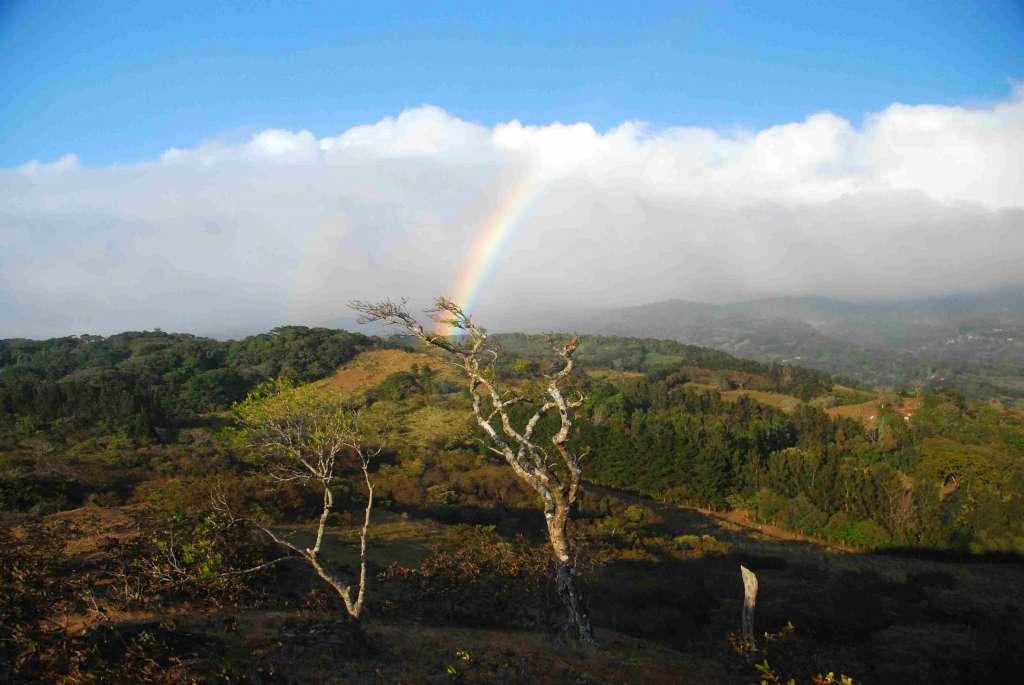 MOnte Verde Kostaryka wycieczka konna 1024x685 - KOSTARYKA, NIKARAGUA I PANAMA  – SZLAKIEM KOLORÓW NATURY