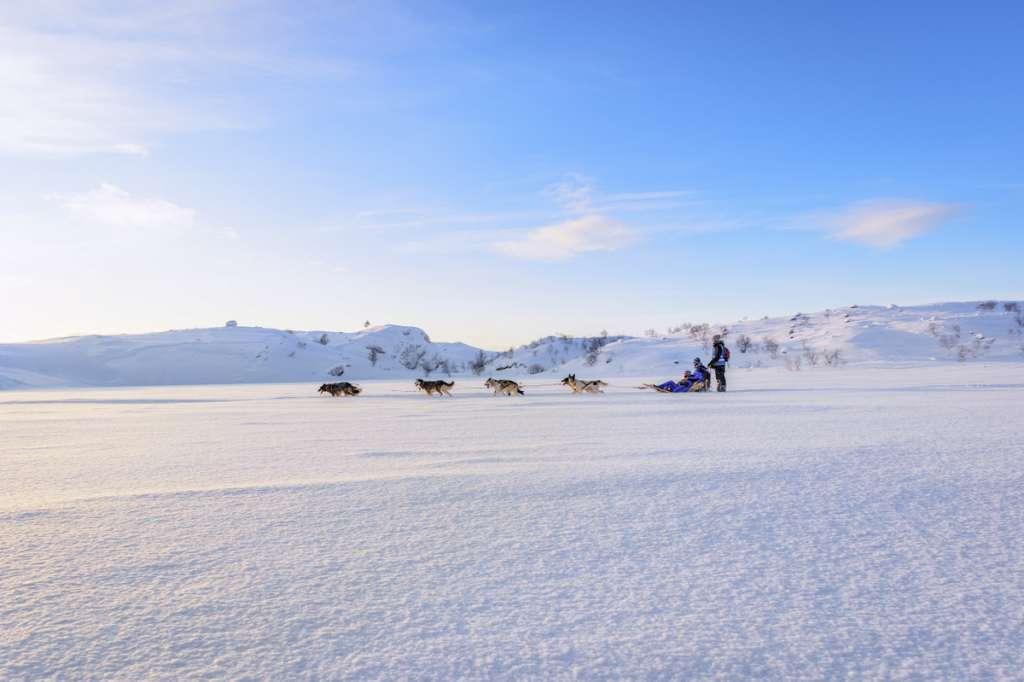 149a42 172ecd90669d48c9a6e5cb4dcfca2c58mv2 d 5000 3327 s 4 2 1024x682 - ISLANDIA – zorza polarna, lodowce, gejzery i wodospady - wycieczka