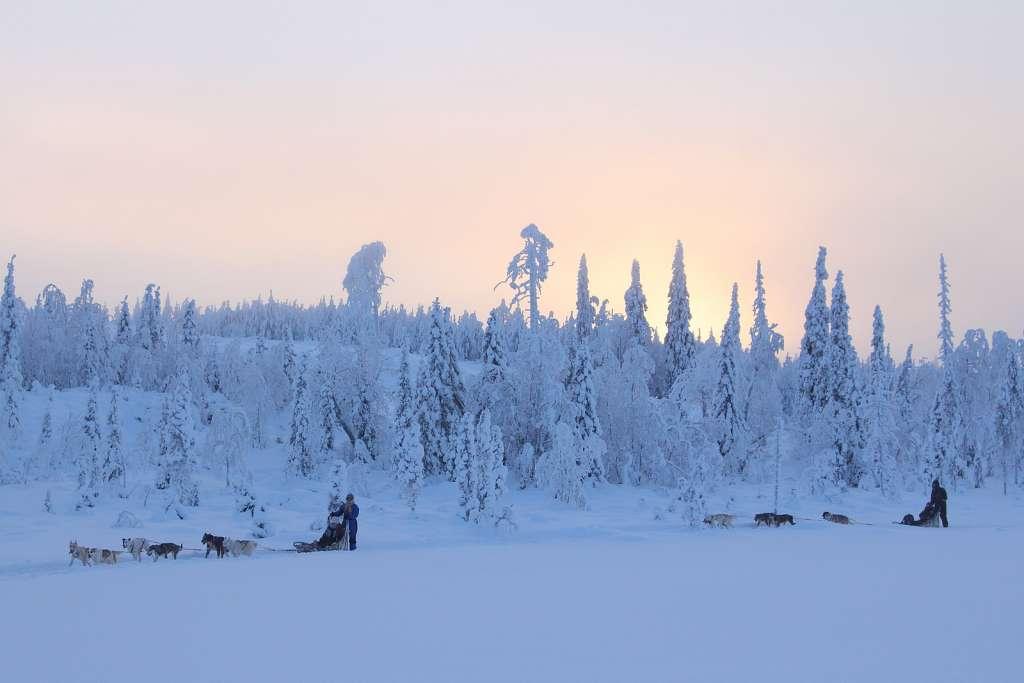 15697121581 07fdc70ea2 h 1024x683 - FINLANDIA: Helsinki, Laponia, zorza polarna i Święty Mikołaj - wycieczka