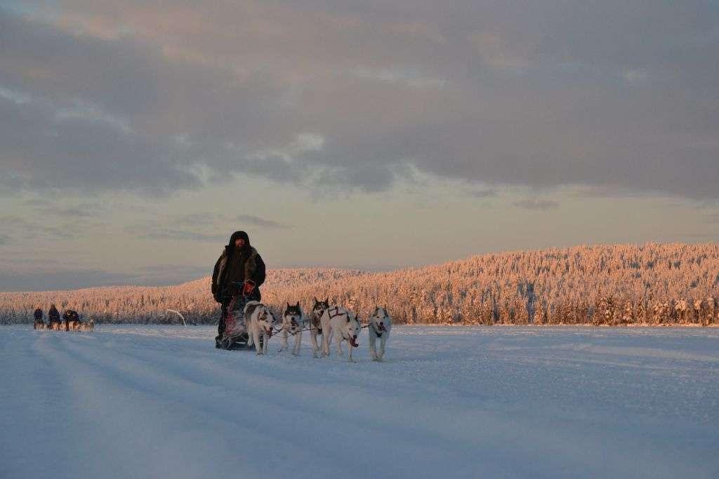 9799432475 c5ea5e391b b 1024x683 - FINLANDIA: Helsinki, Laponia, zorza polarna i Święty Mikołaj - wycieczka