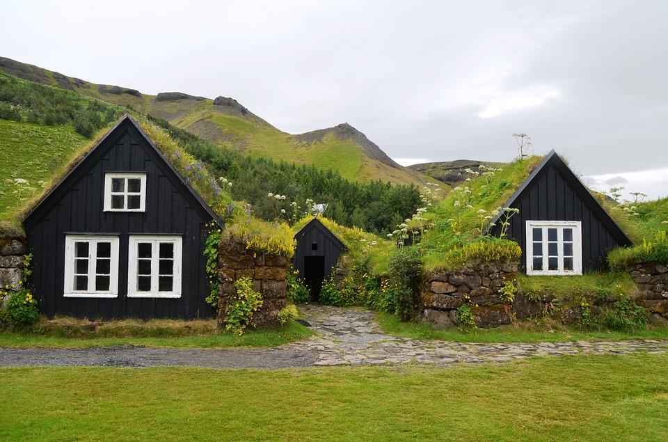 skogar 1989483 960 720 - ISLANDIA – zorza polarna, lodowce, gejzery i wodospady - wycieczka