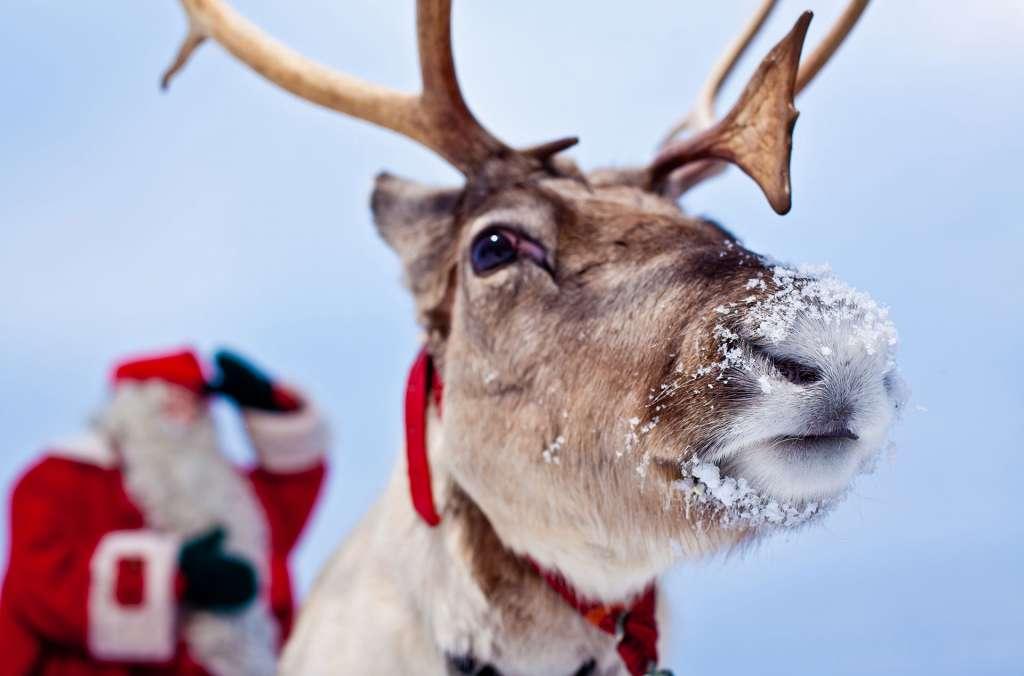 visit rovaniemi love santa claus web opt 9 1024x676 - FINLANDIA: Helsinki, Laponia, zorza polarna i Święty Mikołaj - wycieczka