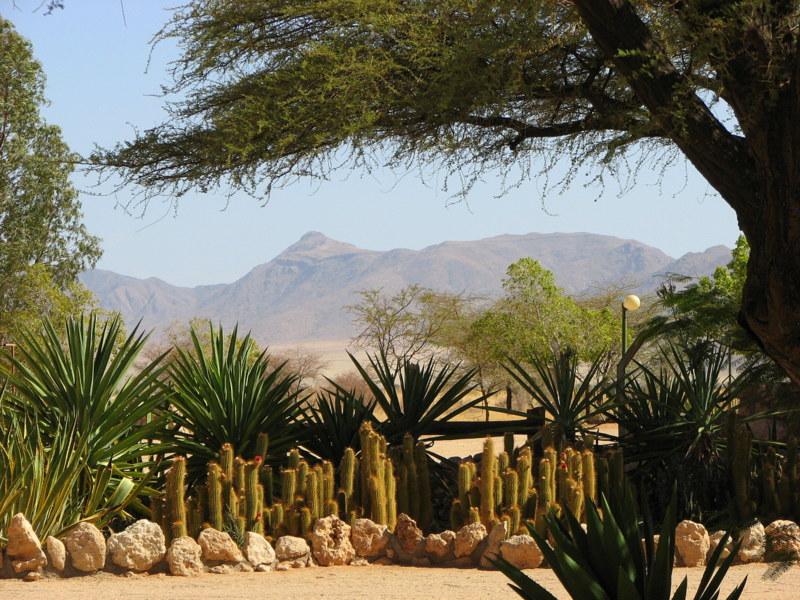 1.W drodze do Sesriem - NAMIBIA: wyprawa do krainy kontrastów i niepowtarzalnych krajobrazów