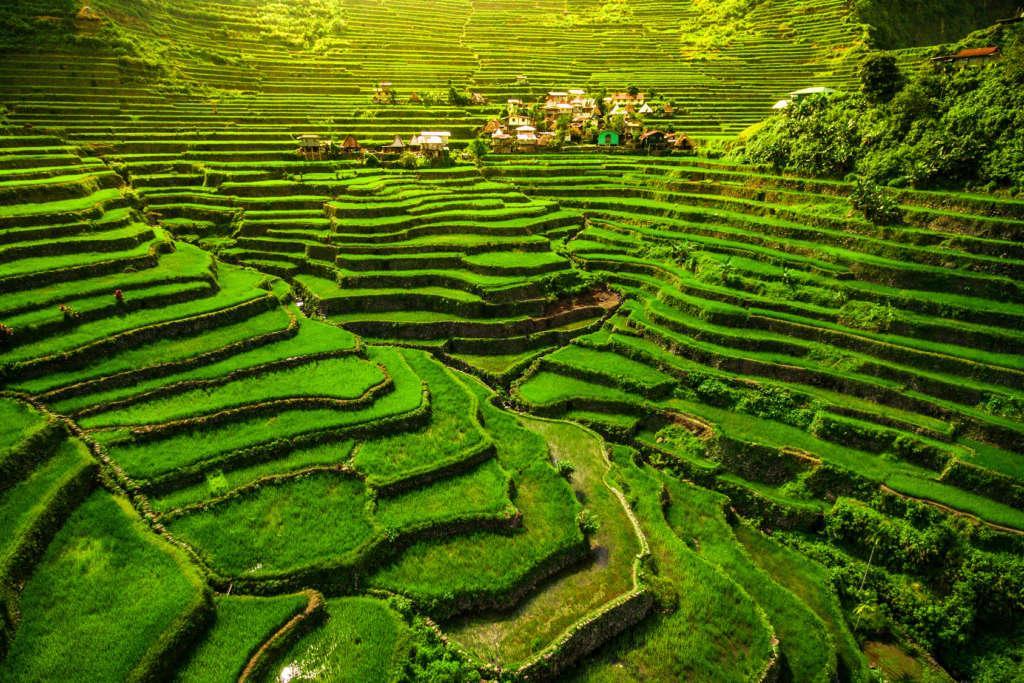 Fotolia 149173754 Subscription Monthly M 1024x683 - FILIPINY: Bohol, Cebu, El Nido, Palawan, Manila i tarasy ryżowe Bangaan - wycieczka