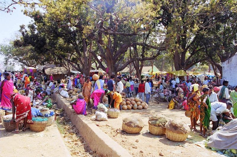 Weekely Market 03 - INDIE: Orisa – Andamany – wyprawa niezwykła