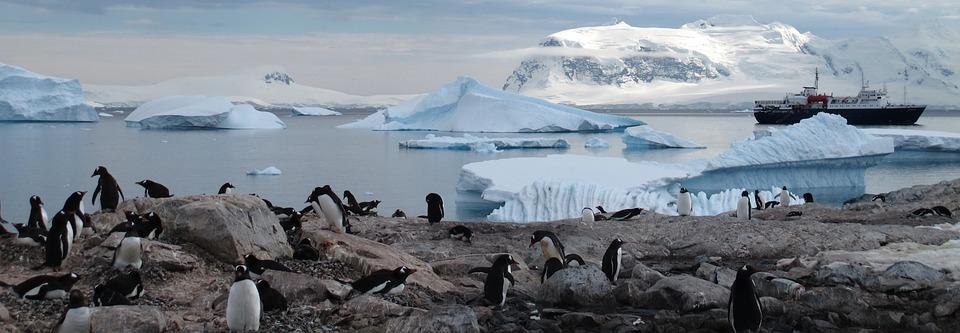 antarctica 940554 960 720 - ANTARKTYDA – PODRÓŻ PRZEZ TRZY KONTYNENTY: Rejs z Nowej Zelandii do Argentyny