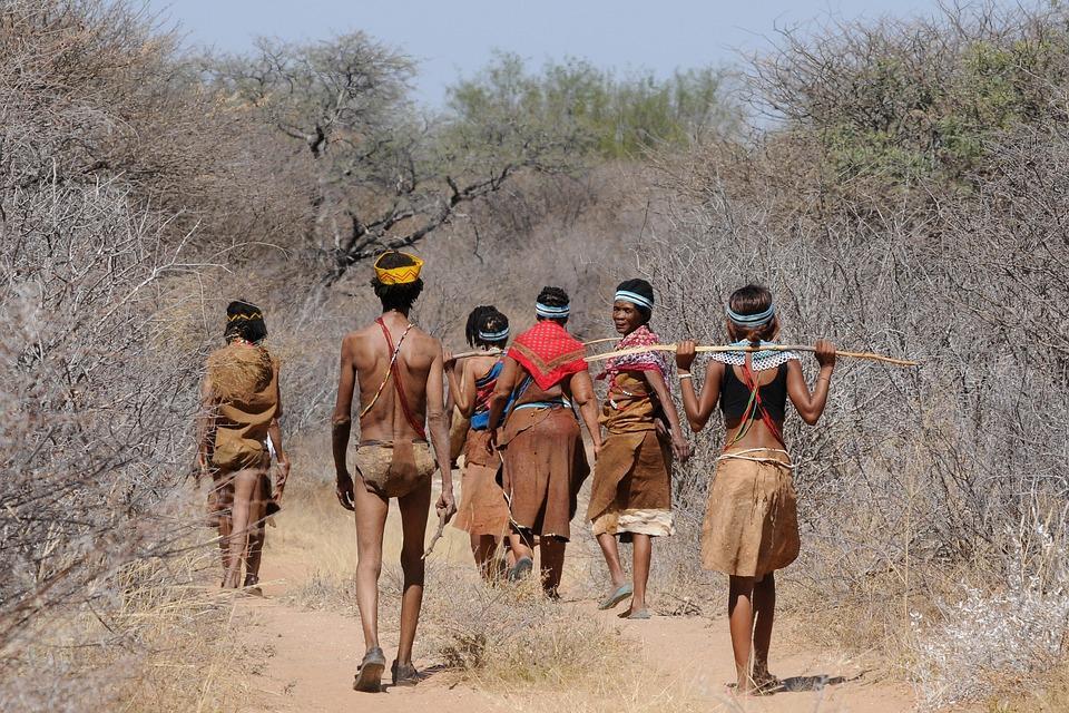 botswana 2219383 960 720 - NAMIBIA – BOTSWANA – ZIMBABWE – wyprawa do wodospadów Wiktorii