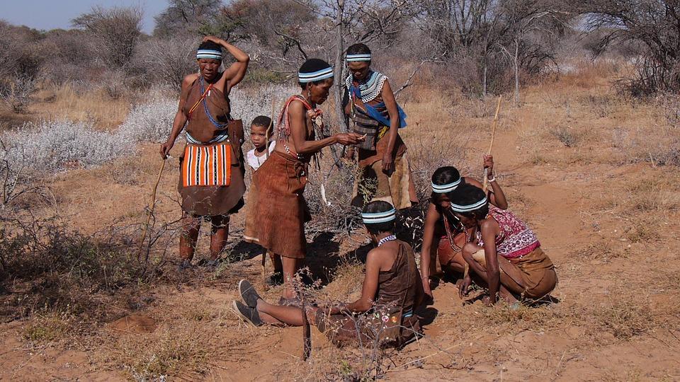 botswana 2219384 960 720 - NAMIBIA – BOTSWANA – ZIMBABWE – wyprawa do wodospadów Wiktorii