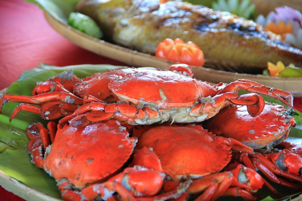 crabs 601429 960 720 - FILIPINY: Bohol, Cebu, El Nido, Palawan, Manila i tarasy ryżowe Bangaan - wycieczka