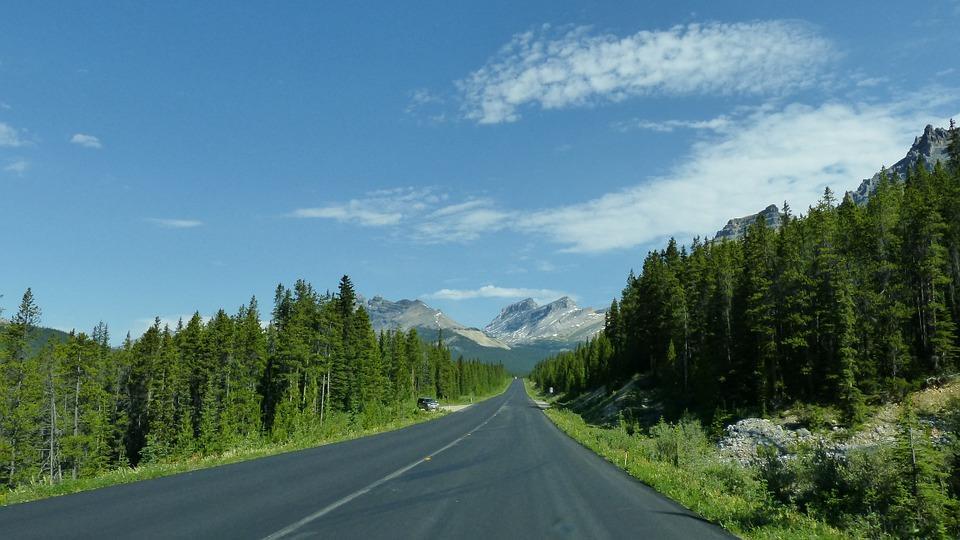 icefield parkway 914014 960 720 - ALASKA - KANADA ZACHODNIA:  Niedźwiedzie Grizzly, łosie i łososie