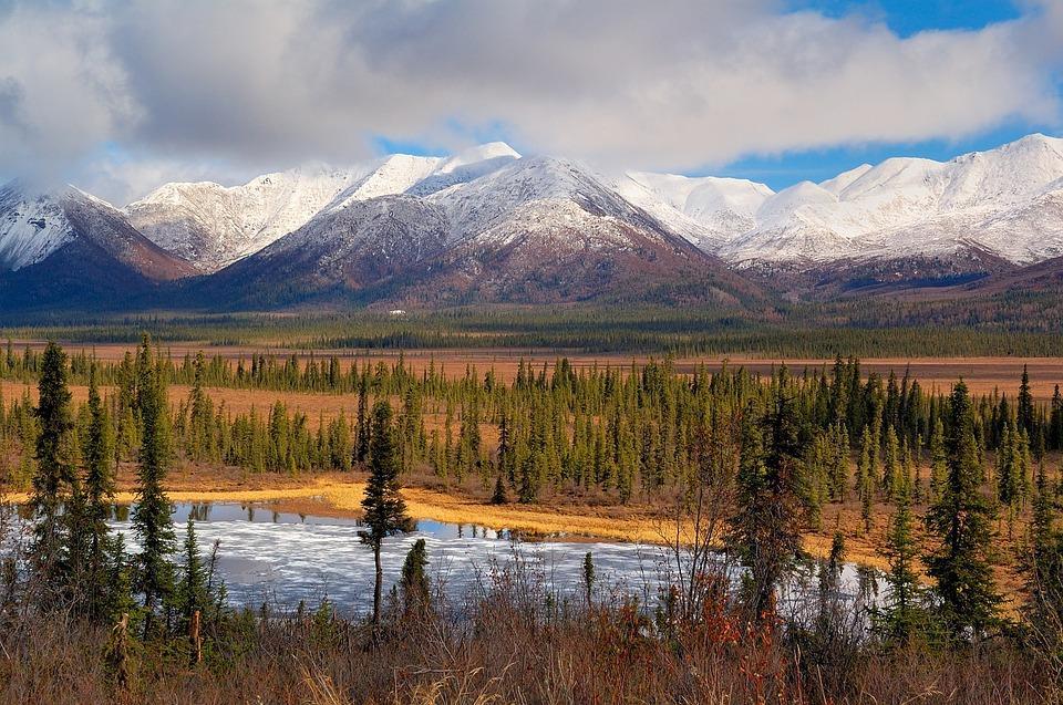 landscape 2008424 960 720 - ALASKA - KANADA ZACHODNIA:  Niedźwiedzie Grizzly, łosie i łososie