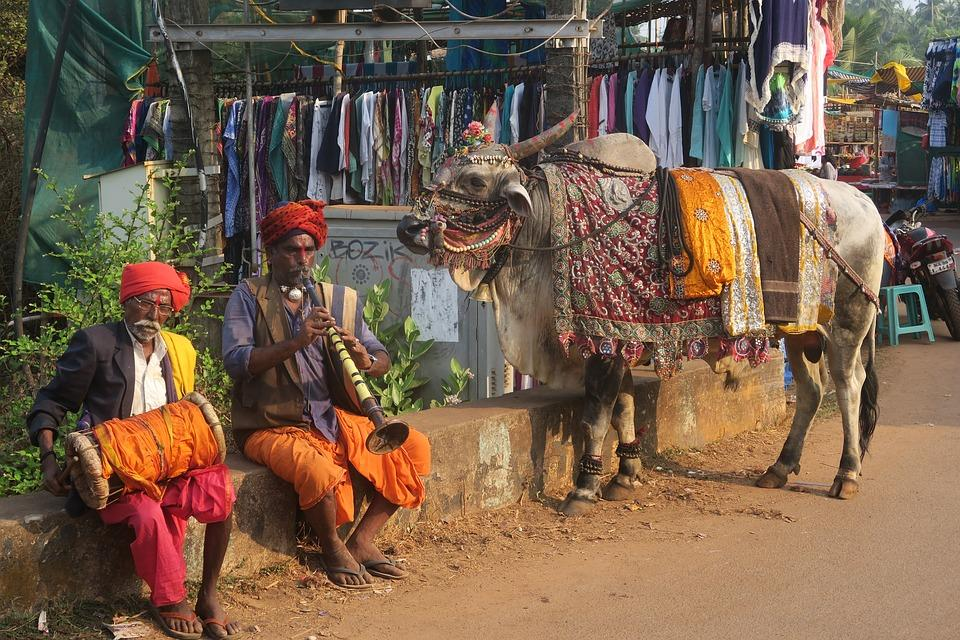people 3182984 960 720 - INDIE: Radżastan i wycieczka na Goa