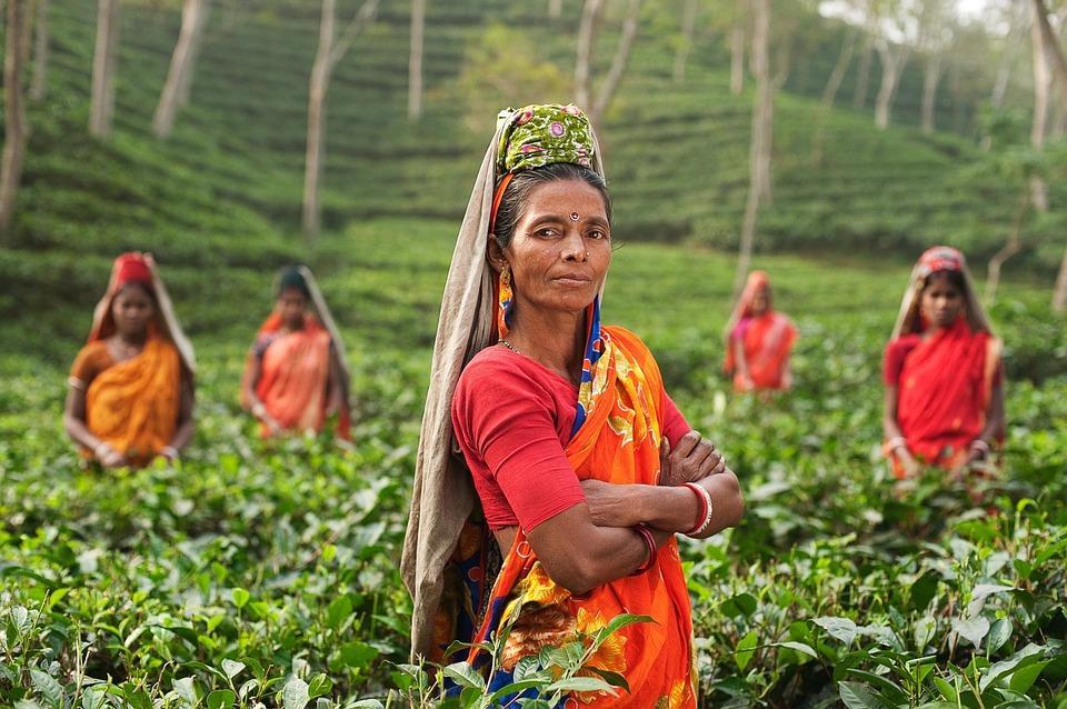 person 690245 960 720 - INDIE POŁUDNIOWE: Kerala i festiwal Theyyam - wycieczka