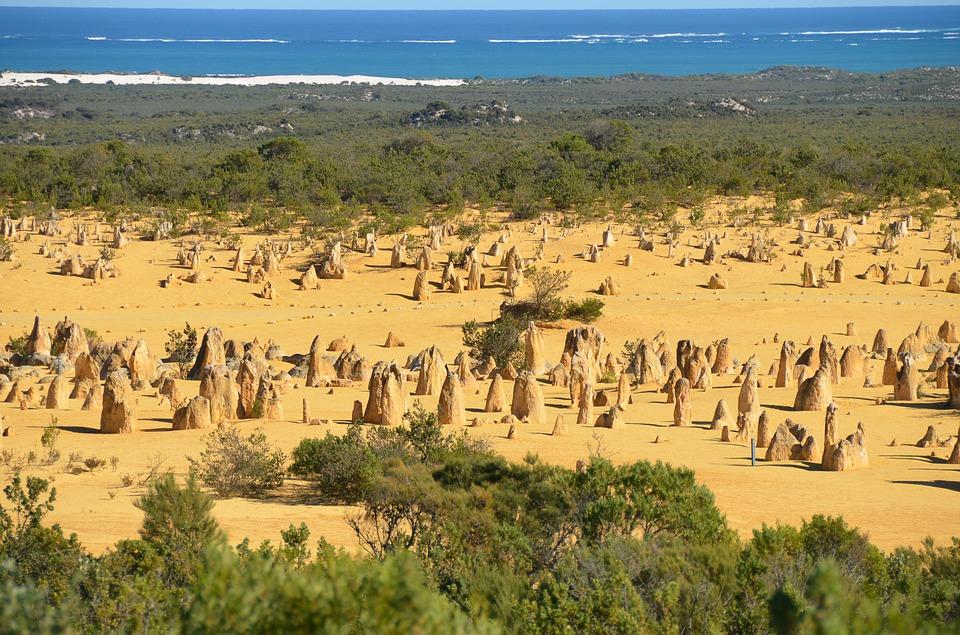 pinnacles 2414391 960 720 - AUSTRALIA z Tasmanią: kangury, psy dingo, diabły tasmańskie i misie koala – wyprawa