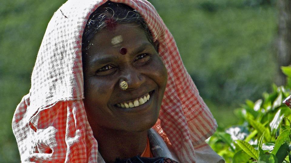 tea pluckers 724758 960 720 - INDIE POŁUDNIOWE: Kerala i festiwal Theyyam - wycieczka
