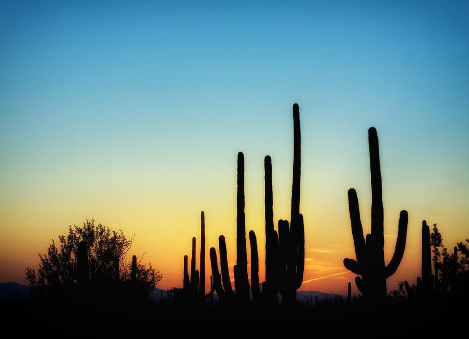 arizona 397746 960 720 - USA: Teksas, Nowy Meksyk i Arizona