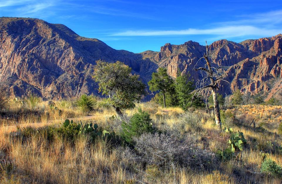 big bend national park 347398 960 720 - USA: Teksas, Nowy Meksyk i Arizona